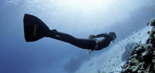 nageur monopalme