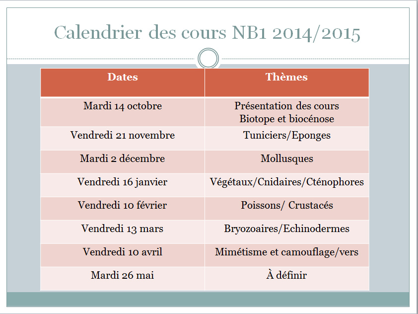 calendrier cours NB1 2014-2015